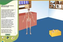 Virtual Labs / Virtual Labs for middle grades science / by The Science Penguin