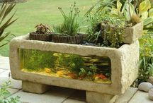 Outdoor aquarium / Awesome