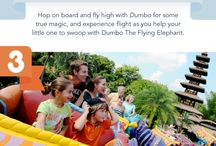 Disney for Toddlers and Preschoolers: Top Tips, What to Take, Best Rides, Best Character Meets and Greets