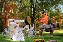 5 Stars for 4 Seasons - Pocono Wedding - Which is your Dream Season?