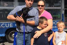 Animal League Adoption Events