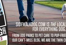 Dogs + Cats = Apartments. / Are you a renter and considering to add a dog or cat to your home? Maybe you're already own a pet. Check out this board if you're looking for tips on how to live in an apartment with your pet. We'll provide tips and share our favorite pet accessories from pet furniture to business friendly establishments in the Minneapolis, St Paul, and the surrounding areas!