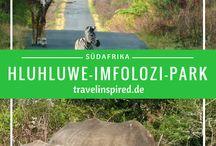 Tierbegegnungen auf Reisen / Pinnwand voller Reiseziele rund um Tierbegegnungen! Hier bekommst du jede Menge Inspiration, wo du Tiere in freier Wildbahn beobachten kannst. Reiseblogger teilen hier ihre Reiseberichte und Erfahrungen mit dir. Um teilzunehmen, folge dem Board und schicke eine Nachricht an kristin@travelinspired.de  oder eine PN über Pinterest.  Viel Spaß beim Pinnen!