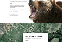 Ethical Elephant Sanctuary / Inspirations for design for Elephant Sanctuary
