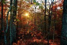 Mabon/Autumn Equinox