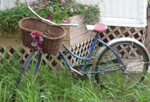 bikes & baskets / by Kristin Marie