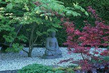 Asian garden ideas