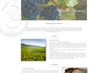 Mes webDesign / Ici vous retrouverez les webdesigns que j'ai réalisé.