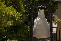 Weddings at La Vigna Event Center / Photos from past weddings, the next could be yours!