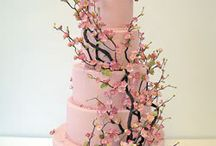 Amazing Cakes / by Chantelle Cass