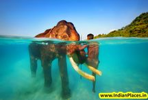 Beaches in INDIA To See