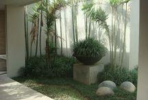 Ideas para Vivero Gardenia