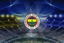 Fenerbahçe Duvar Kağıtları / Sarı Laci duvar kağıtları ve görseller