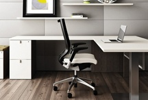 Office/Multi Use Interiors