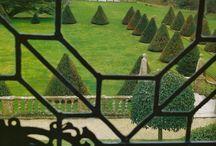 le jardin / by Erica Cook (Moth Design)