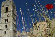 Itinerari in bici / Immagini di tutti gli itinerari che si possono percorrere in bici nel Parco della Maremma: Alberese-San Rabano, Alberese – spiaggia di Collelungo – pineta Granducale – Marina di Alberese, Alberese – A7 foce del fiume Ombrone, Alberese – A7 foce del fiume Ombrone, Punta del Corvo (T1), Cannelle (T2), Poggio Raso (T3)