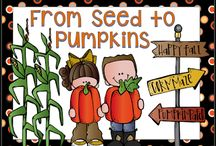 Pumpkin Life Cycle / Embed a little pumpkin theme into your math, science, and literacy curriculum.
