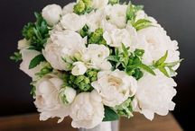 Wedding: Floral Arrangements / A collection of a variety of floral arrangements for your special day.