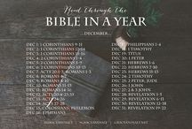 BIBLE: In a Year / by Kristina Smith
