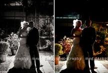 Wedding Venues | Planterra / Wedding images taken by Meg Darket Photography at Planterra in Michigan