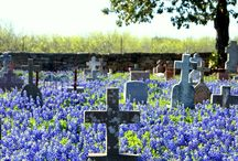 Graveyards and such.... / A peek into the darker beauty of life and death. / by Francena Austin