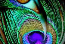 Color Inspiration / Gorgeous color schemes, palettes, and combinations.