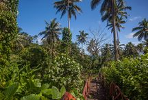 Fiji Trip / Places to visit in Fiji