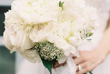 Flower / White and greenery