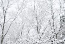 Winter  / by Autumn Soleil