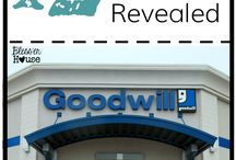 goodwill shopping and Dollar steor