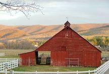 Barns & Farms / by Heidi Bradshaw