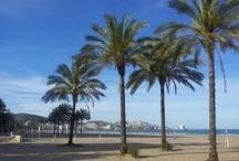 Valencia terra i Mar
