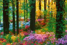 Tuinen en natuur