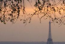 Paris / by Tammy Wood