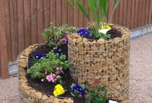 Home Garden Ideas / by Lynn