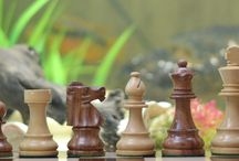 chess sets unique - chessbazaar.com / Now chessbazaar offers a complete range of reproduced antique chess sets at most affordable prices. Our reproduced Antique Design Chess Sets comes in a variety of exotic woods such as rosewood, bud rosewood, sheesham wood, red sandal wood. Our master craftsmen have reproduced the antique Ivory chess sets in camel bone. Antique chess sets reproduced by us are brand new and unsued and they can be used to play the game unlike the genuine antique chess set which are good for display only.