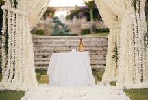 Wedding  / by J