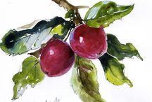 Croquis Urbain - Fruits
