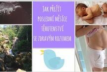 Těhotenství a vše kolem / Nástěnka se věnuje veškeré problematice těhotenství a přípravy na porod.