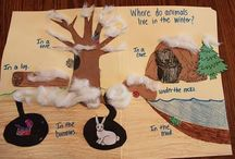 Animal Habitat Theme / Everything about animals and where they live. Find information, videos, crafts and websites that will tell you all about animal habitat. Sing songs, write poems and make crafts that will help you learn about animals.