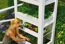 Balkon Garten / Auf dieser Pinnwand findet man alles zum Thema Balkon und Garten. Viele Tipps und Tricks wie man es sich auf dem Balkon oder auch im Garten schön machen kann :)