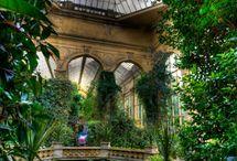 Gardens / by Karen Dearness
