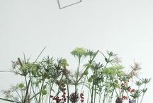 Flower power / Inspi fleurs et vases