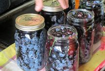 Canning- Jams Jellies Etc