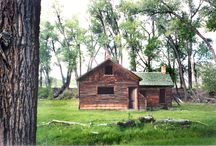 Cabins, Cottages