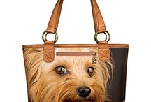 It's A Yorkie Thing! / ~ All things Yorkie ~ / by Pam Ward