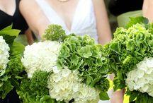 Wedding Ideas / by Pamela Goss