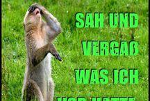 Lustig! ;)