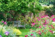 Gardens & flowers..