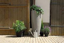 New garden - inspiratie